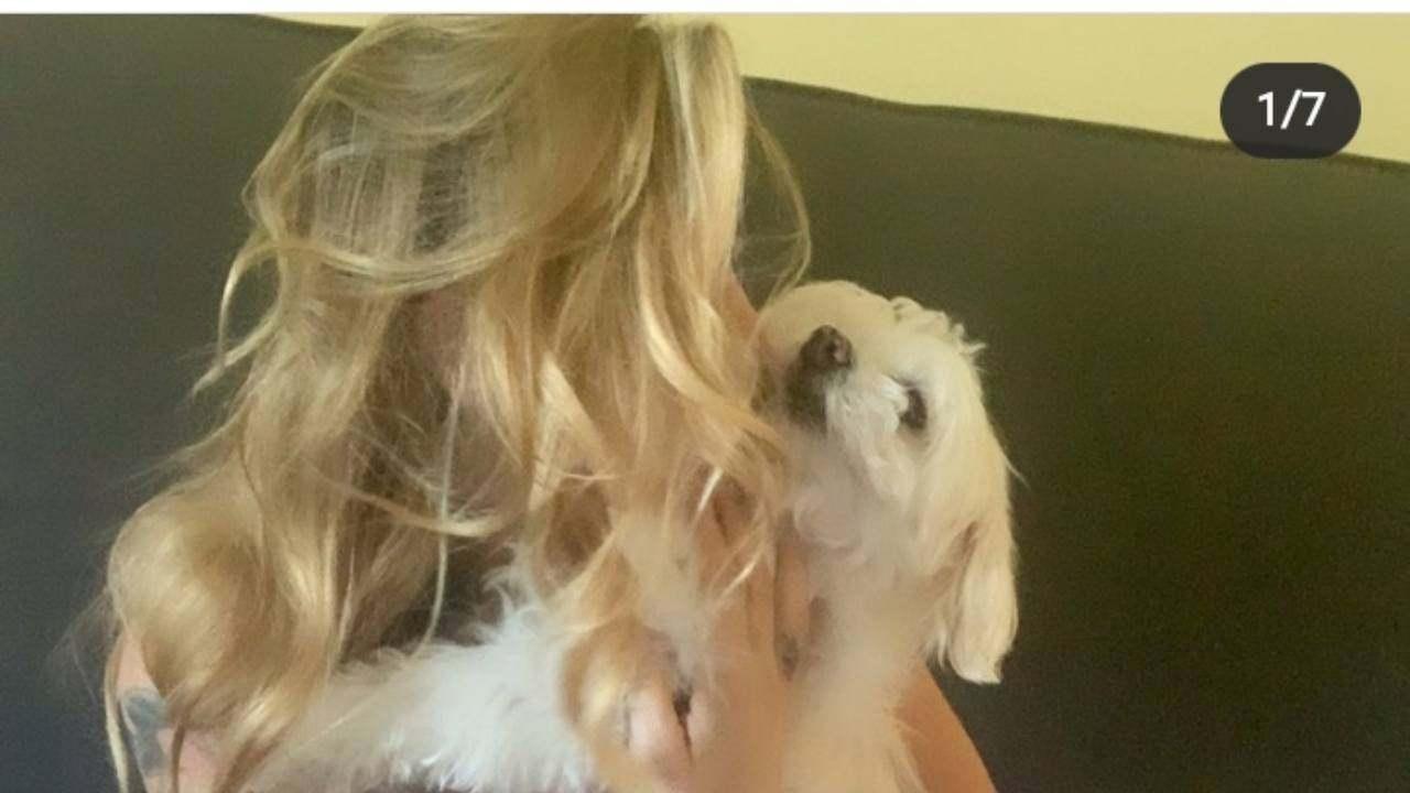 elenoire casalegno (instagram) (1)